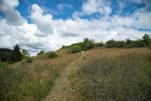 Wacholderweg von Aicha nach Allersburg  Wandern im Amberg-Sulzbacher Land 16