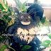 Geburtstagstorte im Totoro style (Tortenfigur mit Anleitung)