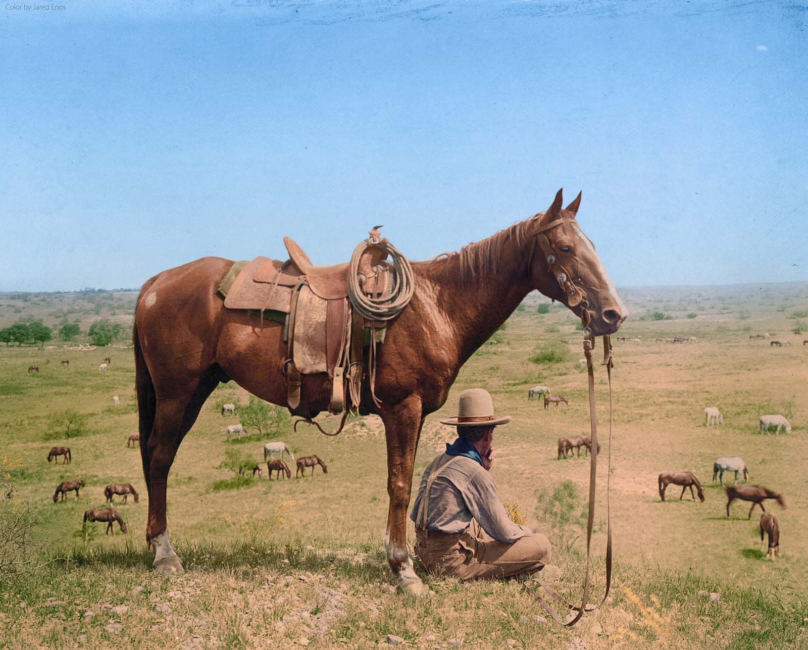 Photo of a cowboy seated next to his horse on a hill, looking down at other horses in Old West Bonham, Texas. June, 1910.