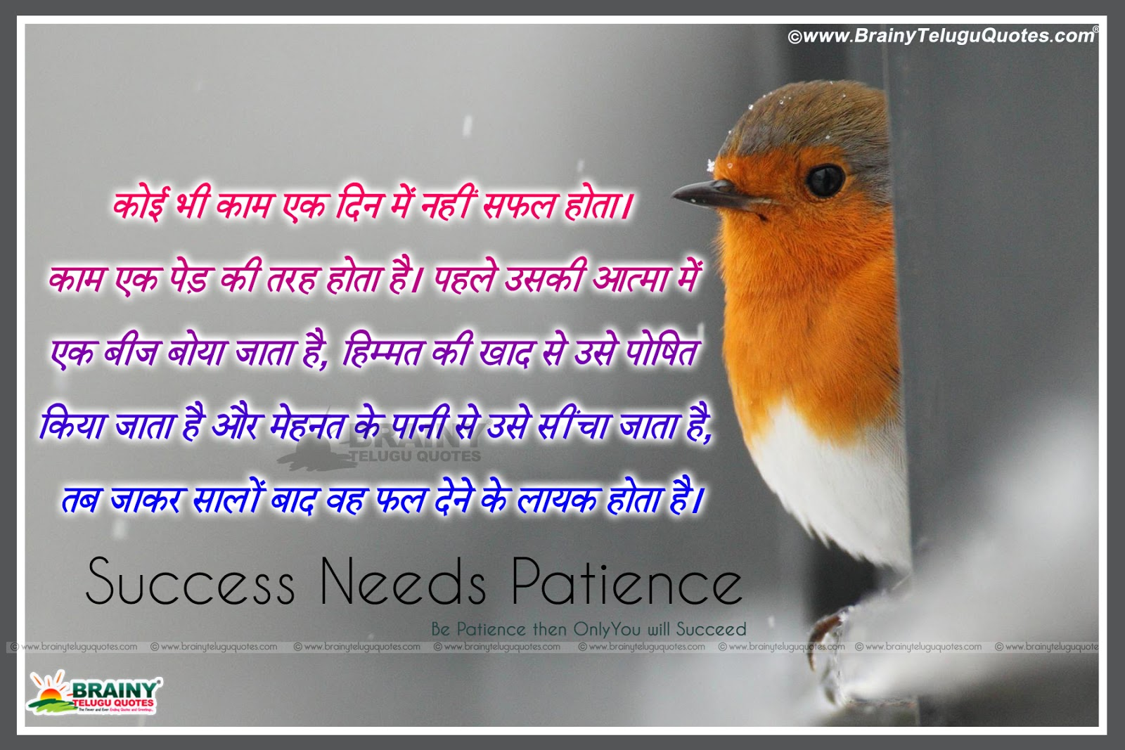 Inspirational Success Quotes In Hindi With Beautiful Hd