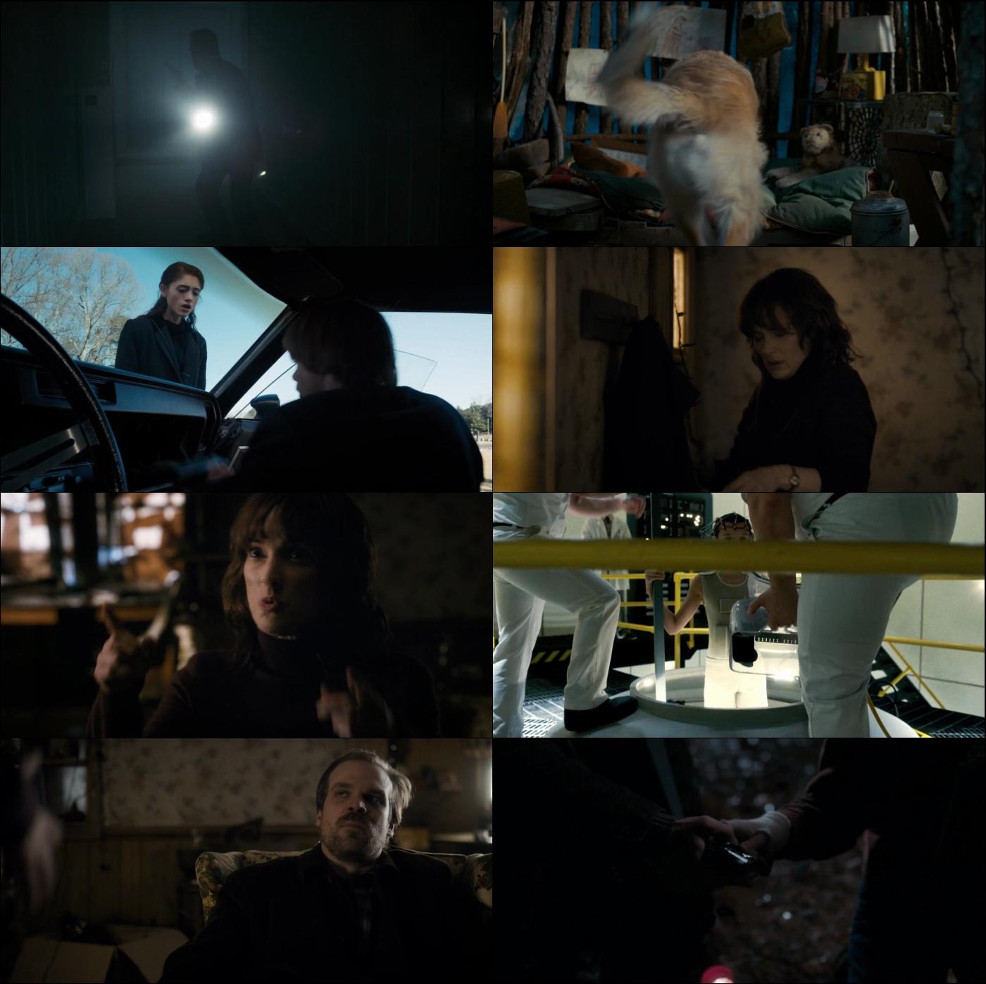 Stranger Things Temporada 1 720p Latino