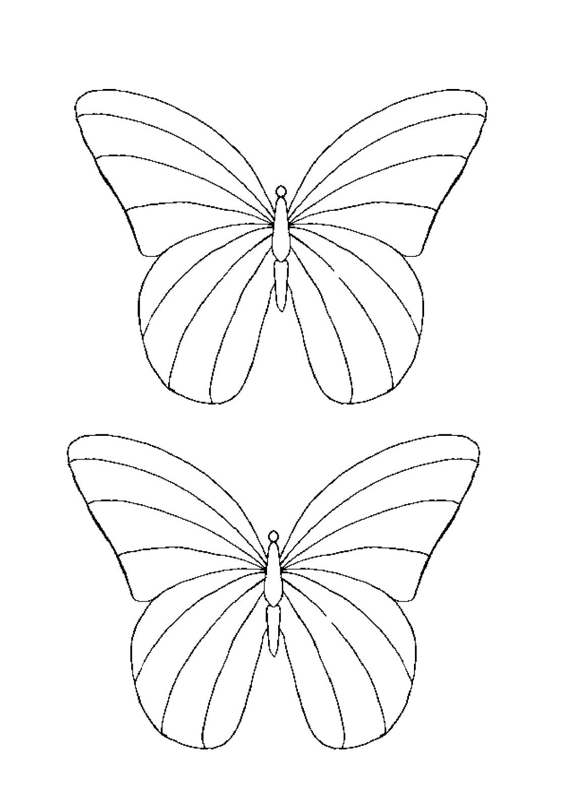 Modele De Fluturi De Colorat Pictures To Pin