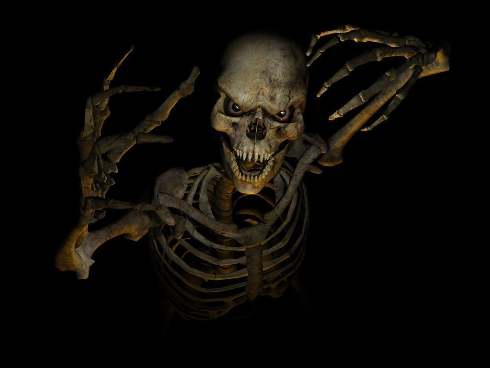Please Post Pictures Of Skeletons Here Dashnet Forums