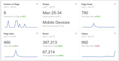 Liberty Chronicle Independent Facebook page view stats