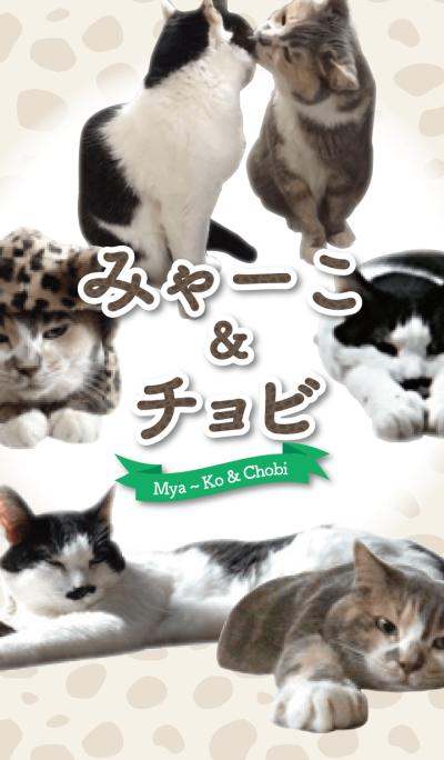 Mya〜Ko&Chobi @ Pet Grand Prix