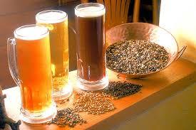 Cierra COFECE expediente sobre barreras a la competencia en el mercado de semilla y grano para la producción de cerveza