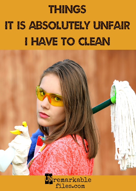 Most of the time I don't totally hate cleaning. Unless I'm cleaning one of these things - then I just might lose my mind.  {posted @ Unremarkable Files}