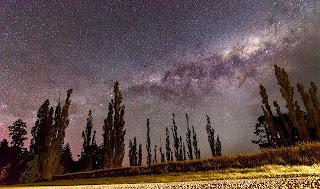 arboles con noche despejada, noche estrellada, paisaje noche despejada y estrellada