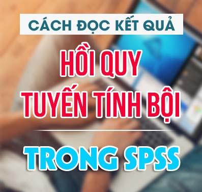 cach-doc-ket-qua-hoi-quy-da-bien-spss