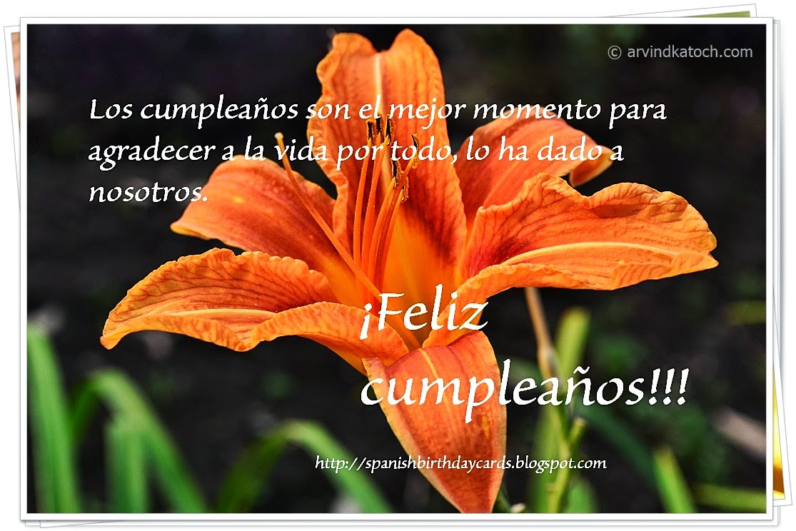 cumpleaños, agradecer, Spanish Card, Birthday Card,