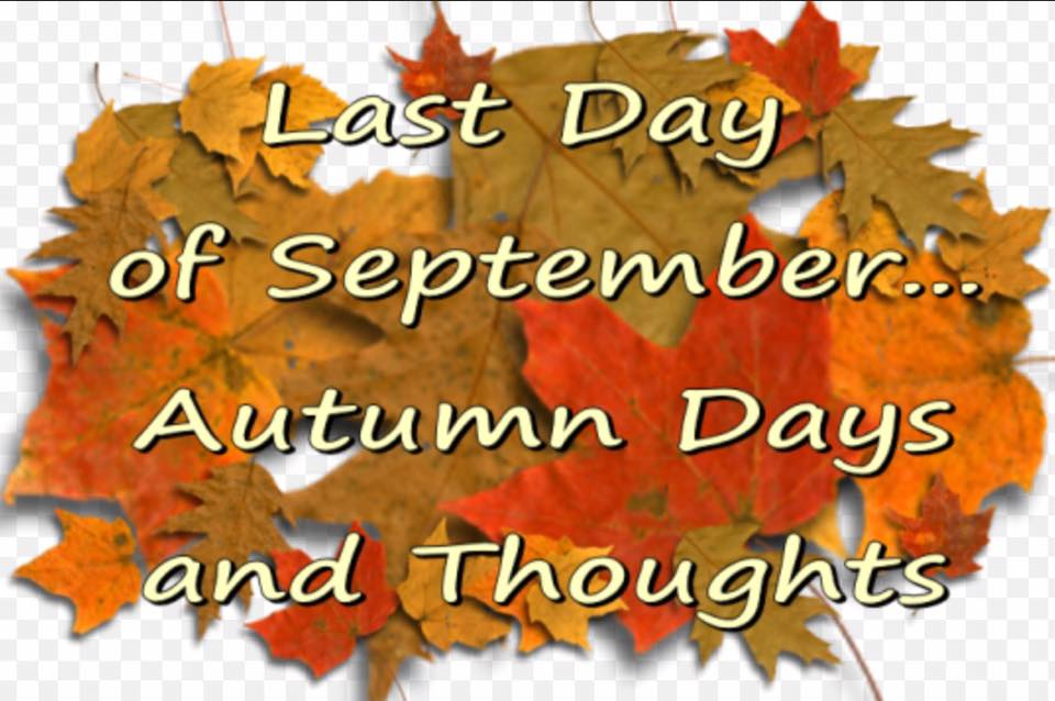XmasDolly: Last Day Of September Autumn Days And Thoughts