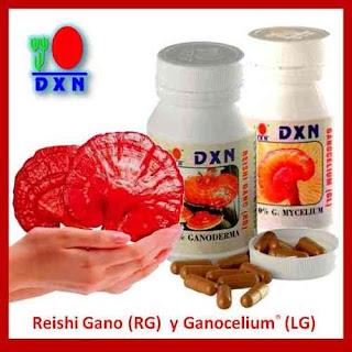 que fruta sirve para bajar el acido urico la cebolla hace mal para el acido urico alimentos prohibidos para pacientes con acido urico elevado