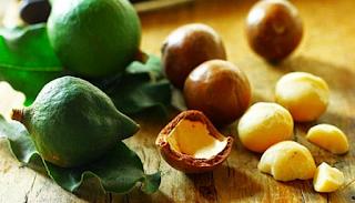 Unti  Bisunti Oli vegetali Parte Due olio macadamia
