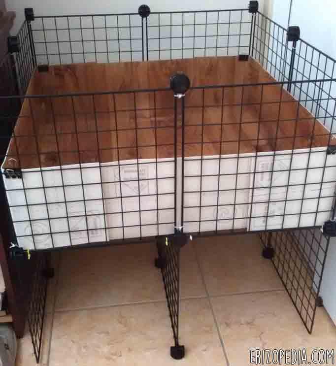 Hábitat para erizos de tierra (C&C Cage)