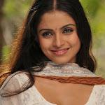 Sheena Shahabadi Latest Pics @ Tolisariga Telugu Movie