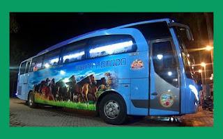 Nomor Telepon Agen Bus Wisata Komodo