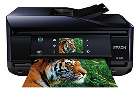 Epson XP-800 driver & software (Recommended)