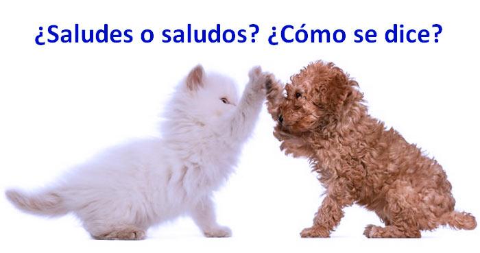 Saludes o saludos cmo se dice ocio 3000 saludes o saludos cmo se dice gato y perro altavistaventures Images