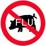Virus Flu Babi Tewaskan 36 Ekor Babi Di Dogiyai