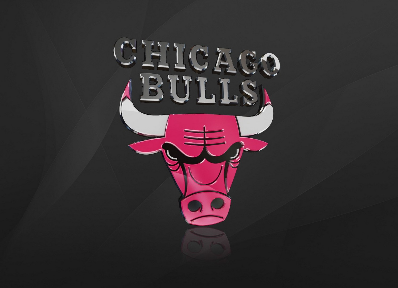 Chicago Bulls Logo wallpaper 96251