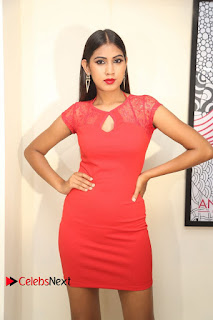 Actress Model Honey Pictures at Anoos Franchise Salon and Clinic Launch  0065.JPG