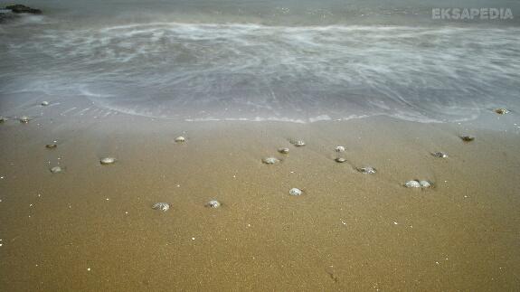 Gambar pantai jodo Batang