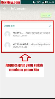pesa grup whatsapp,pembaca pesan grup whatsapp,grup wa,mengetahui yang baca pesan whatsapp