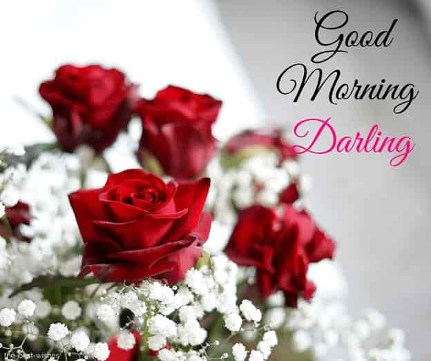good morning darling flowers