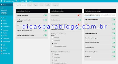 Atualizações Automaticas no WordPress