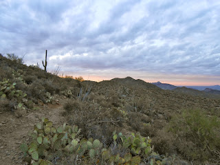 beautiful hiking trail saguaro national park
