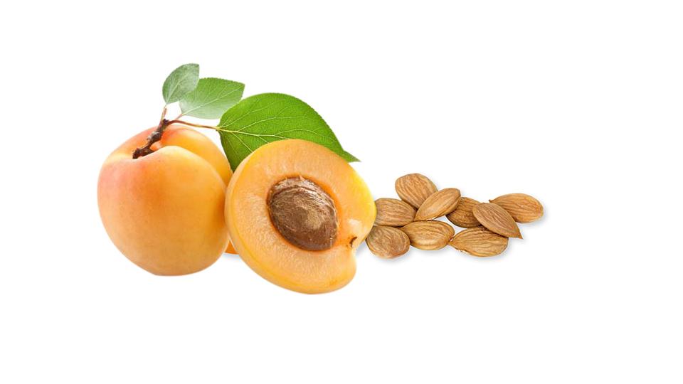 Biji Apprikot