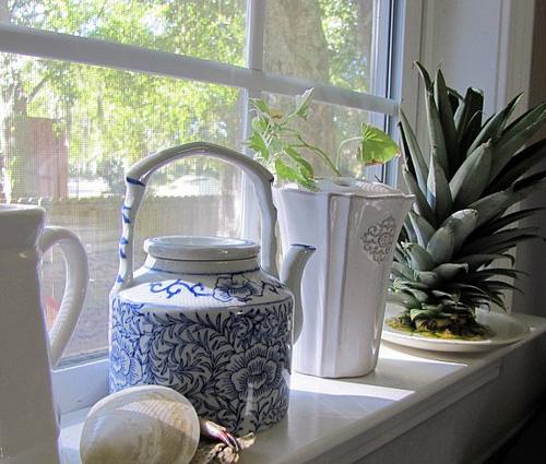 Como plantar abacaxi em um vaso na sua casa