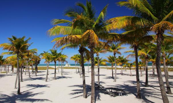 Key Biscayne Crandon Park Praia