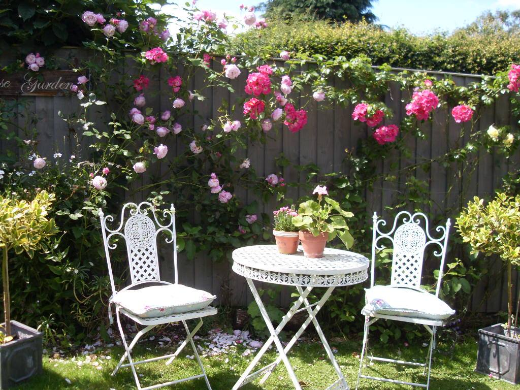 Time To Create My Quintessential English Country Rose Garden