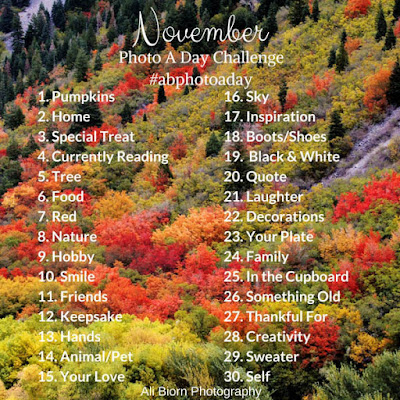 November photo a day challenge Ali Biorn Photography