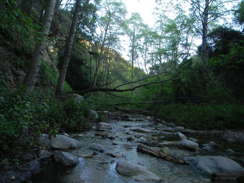 My Own 100 Hikes Hike 2012 021 Sturtevant Falls