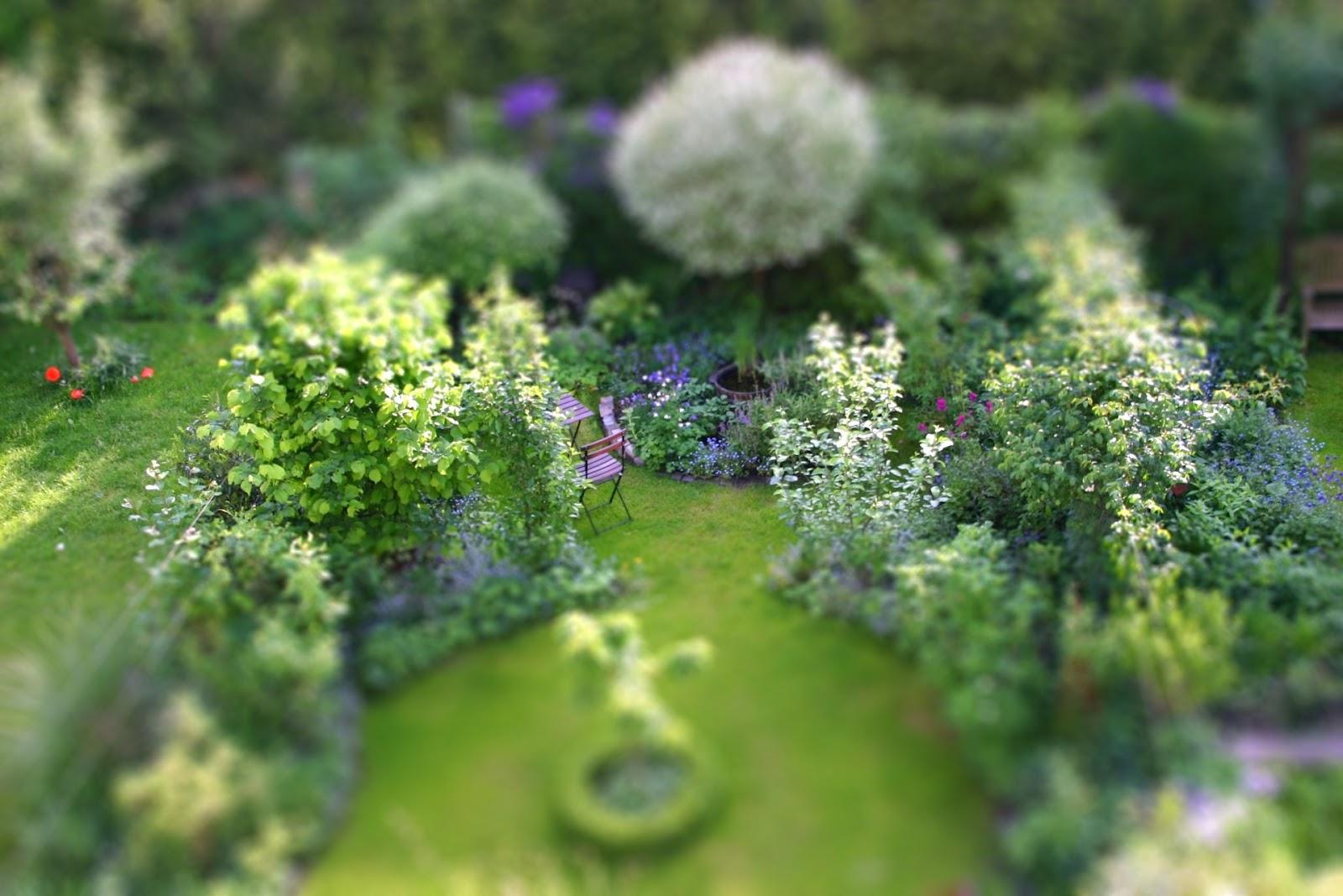 Gunstig gartnern uberlebenstipps fur den reihenhausgarten for Garten planen mit kleine regentonne für balkon