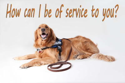 How to make your dog a service dog in the Philippines