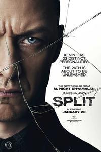 Split (2016) (Dual Audio) (Hindi-English) 480p-720p-1080p
