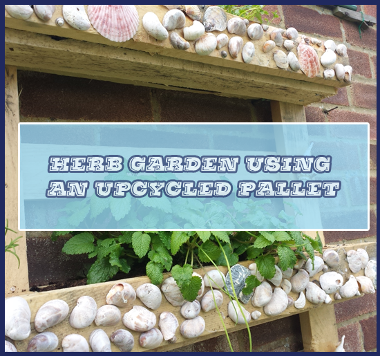 Herb Garden from an upcycled pallet