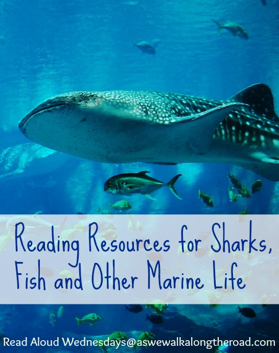 Books and resources for sharks, fish and other marine life