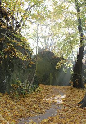 otoño radiante