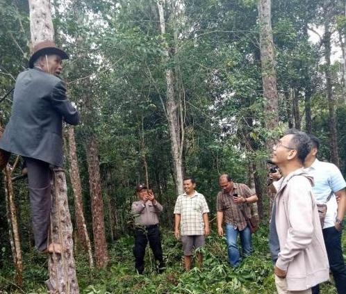 Sihar Sitorus: Kita Desak UNESCO Melegetimasi Kemenyan Sebagai Biodiversity Kaldera Toba