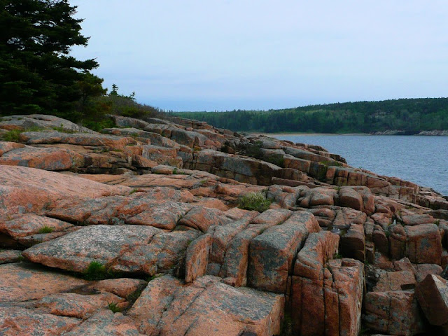 Otter Cliff coastline and Forest At Acadia National Park