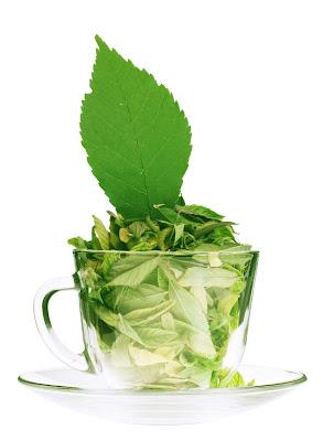 green-patti-wallpapersimgs