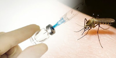 Detail Informasi Tentang Vaksin Demam Berdarah Dengue