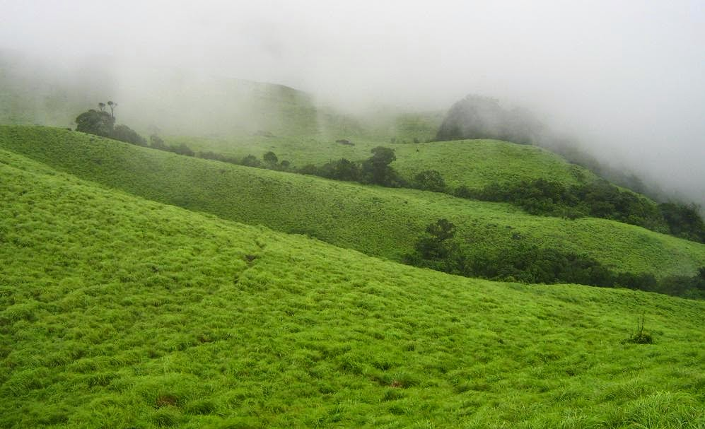 Kerala Rain Pictures, Monsoon Photos, stunning images from Kerala
