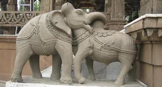 elephant and bull fighting optical illusion
