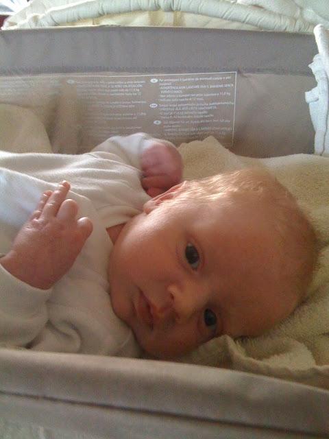 madmumof7's baby #7