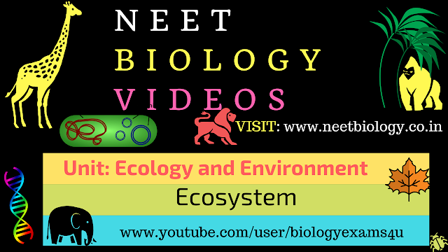 NEET Biology MCQ on Ecology and Environment